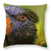 Australian Rainbow Lorikeet Throw Pillow