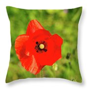 Austrian Poppy Throw Pillow
