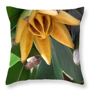 Autograph Tree Seed Pod Throw Pillow