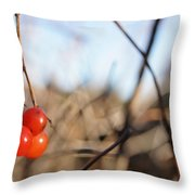 Automn Fruits Throw Pillow