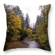 Autum In Oregon Throw Pillow