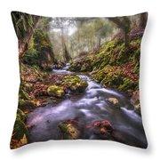 Autum In The Sierra Negra Highlands Throw Pillow