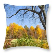 Autumn # 1 Throw Pillow