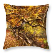 Autumn - Landscape - Country Road Side Throw Pillow