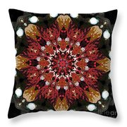 10446 Autumn 01 Kaleidoscope Throw Pillow