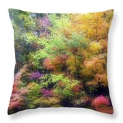 Autumn 2 - 16oct2016 Throw Pillow