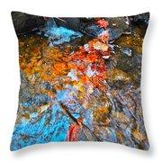 Autumn 2015 164 Throw Pillow