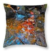Autumn 2015 166 Throw Pillow