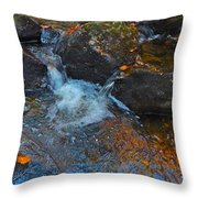 Autumn 2015 167 Throw Pillow