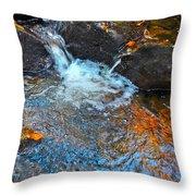 Autumn 2015 168 Throw Pillow