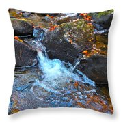 Autumn 2015 170 Throw Pillow