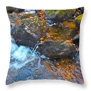 Autumn 2015 173 Throw Pillow