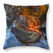 Autumn 2015 178 Throw Pillow
