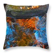 Autumn 2015 249 Throw Pillow
