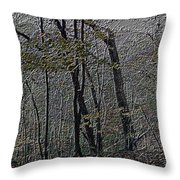 Autumn 2015 Panorama In The Woods Pa 01 Throw Pillow