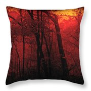 Autumn 2015 Panorama In The Woods Pa 06 Throw Pillow