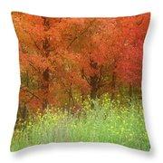 Autumn 3 - 16oct2016 Throw Pillow