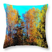 It's Getting Colder Every Day And Soon It Will Be Winter Again    Throw Pillow by Hilde Widerberg
