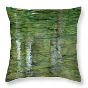 Autumn Abstract - 2 Throw Pillow
