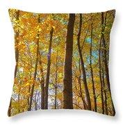 Autumn Afternoon Light Throw Pillow