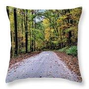 Autumn Along A Country Road 1 Throw Pillow