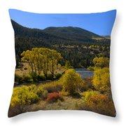 Autumn Along The Rio Grande Throw Pillow