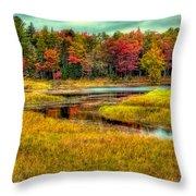 Autumn Along The River Throw Pillow