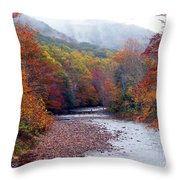 Autumn Along Williams River Throw Pillow