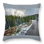 Autumn And Winter In One Throw Pillow