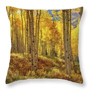 Autumn Aspen Forest Aspen Colorado Panorama Throw Pillow
