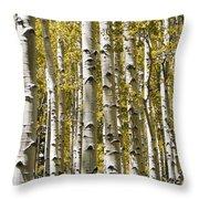 Autumn Aspens Throw Pillow by Adam Romanowicz