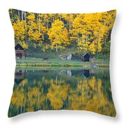 Autumn Aspens Along Route 550, North Throw Pillow