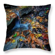 Autumn At A Mountain Stream Throw Pillow