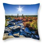 Autumn At Bear Rocks Throw Pillow