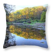 Autumn At Brush 2 Throw Pillow
