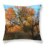 Autumn At Bull Run Throw Pillow