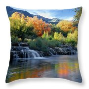 212m47-autumn At Cascade Springs  Throw Pillow