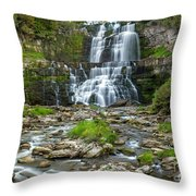 Autumn At Chittenango Falls Throw Pillow