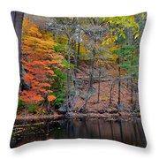 Autumn At Echo Bridge Throw Pillow