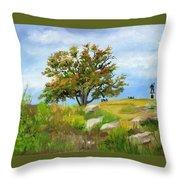 Autumn At Gettysburg Throw Pillow