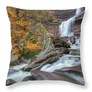 Autumn At Kaaterskill Falls Throw Pillow