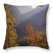 Autumn At Logan Pass Throw Pillow