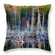 Autumn At Moosehead Bog Throw Pillow
