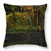 Autumn At Wrights Pond Throw Pillow