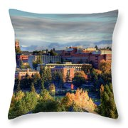 Autumn At Wsu Throw Pillow