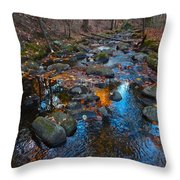 Autumn B 2015 111 Throw Pillow