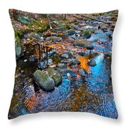 Autumn B 2015 113 Throw Pillow