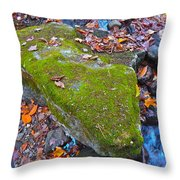 Autumn B 2015 114 Throw Pillow