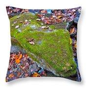 Autumn B 2015 115 Throw Pillow