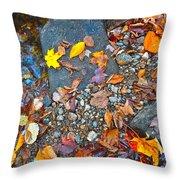 Autumn B 2015 116 Throw Pillow